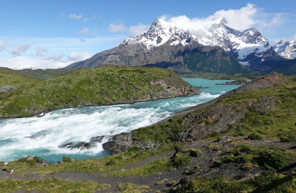 Guanaco Nationalpark Torres del Paine Patagonie Chile